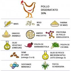 Infografica Ingredienti Crocchette-MINI Adult Pollo e Riso Dogbauer