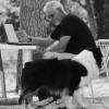 Michele Caricato Dog Teller