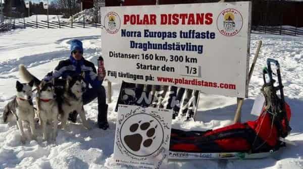 Salvatore Fogliano Polardistas 2017