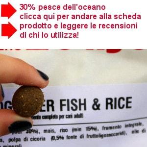 crocchetta Fish & Rice Dogbauer