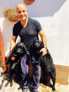 cuccioloni labrador retriever neri