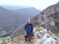 Pastore Tedesco Ken in montagna