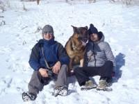 Pastore Tedesco Ken sulla neve