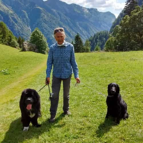 Signore con Flat coated retriever e Terranova in montagna